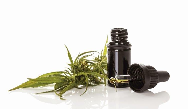 aceite cannabis 1