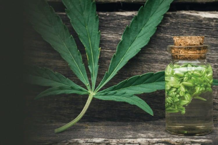cannabis belleza 1